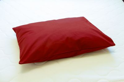 Padjapüür ühevärviline bordoo punane 50x60